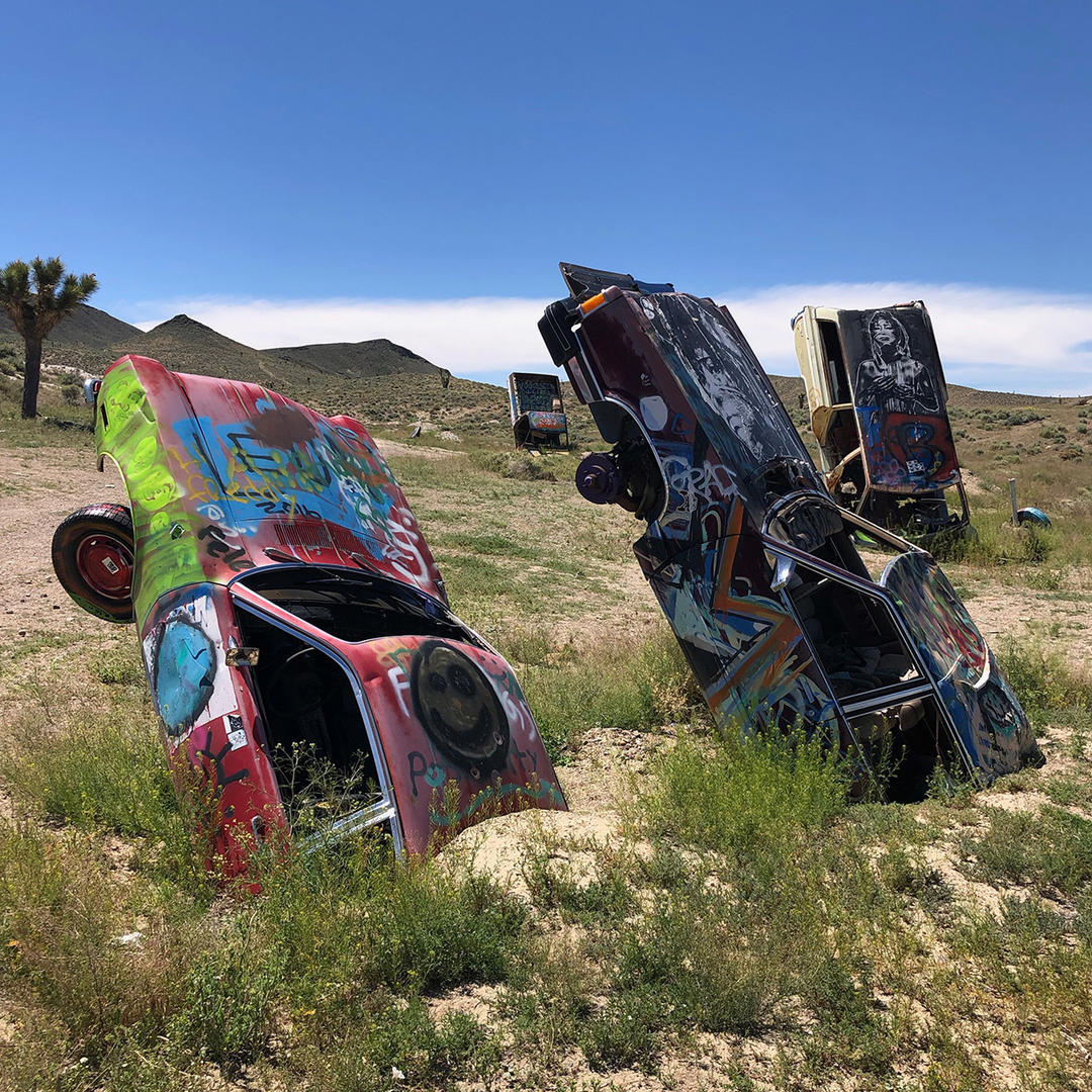The International Car Forest In Goldfield Nv